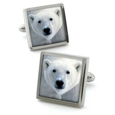 Boutons de manchette, Polar Bear