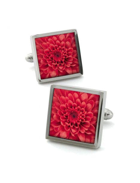 Boutons de manchette, Chrysanthemum rouge