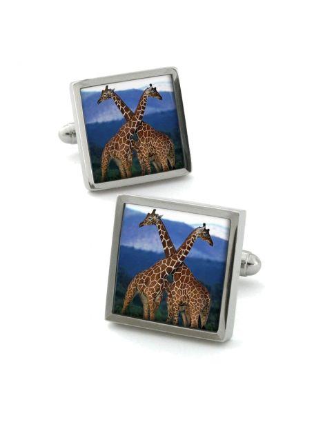 Boutons de manchette, Giraffe