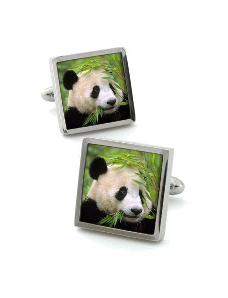 Boutons de manchette, panda