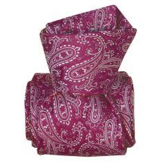 Cravate Classique Segni Disegni, Denver Violet