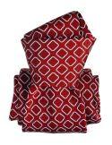 Cravate Segni Disegni LUXE, Faite main, Aramis Rouge Segni et Disegni Cravates