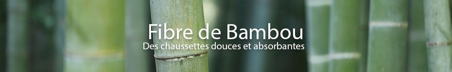 Bambou majoritaine