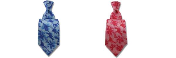cravate-robert-charles-tie-frangipani-rose-et bleu