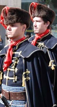 cavalier croate